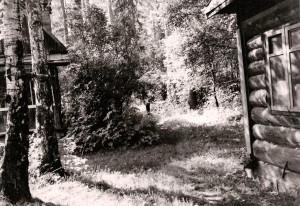 Дача №6 по проспекту Ильича, 1965г